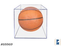 Basketball in Case