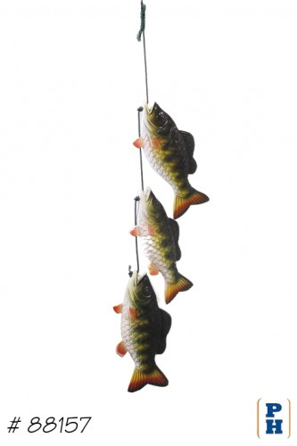 Fish on Rope